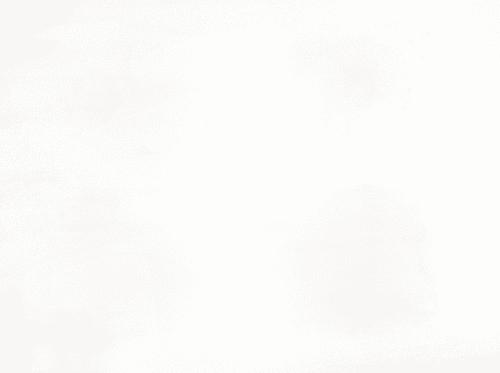 DSC 0188-2ze